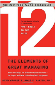boek - 12 The Elements of Great Managing
